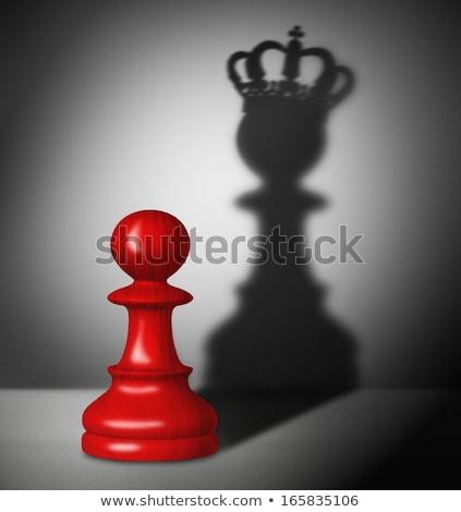 Erő szabadság sakk metafora piros szürke Stock fotó © grechka333