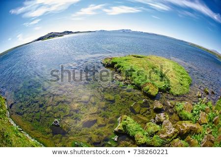 Tó Izland park nyár hegyek sziget Stock fotó © elxeneize