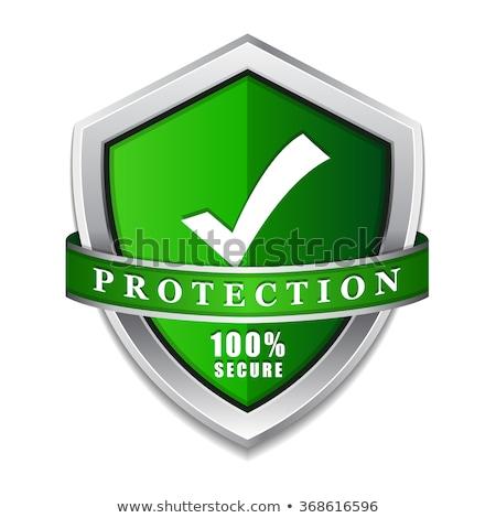 Foto stock: Ssl · proteção · proteger · verde · escudo · vetor