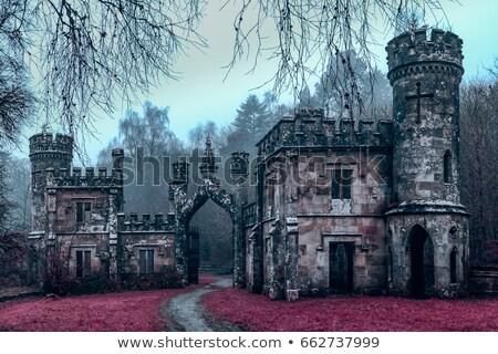 Dark castle icons Stock photo © Yuriy