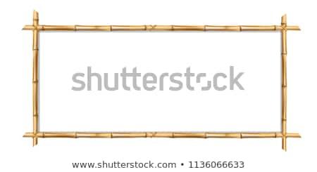 竹 · フレーム · 孤立した · 白 · 木材 · 背景 - ストックフォト © loopall