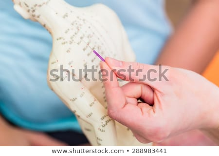 Alternative practitioner explaining acupuncture Stock photo © Kzenon