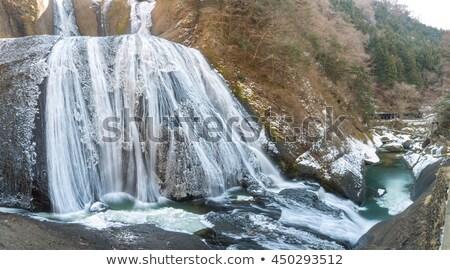 Snow At Fukuroda Falls Stok fotoğraf © vichie81