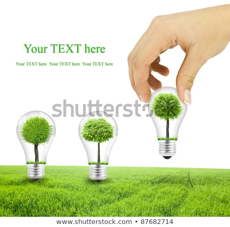 man with lightbulb and trees inside stock photo © rastudio