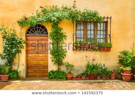 итальянский дом снаружи украшенный цветы банка растений Сток-фото © Digifoodstock