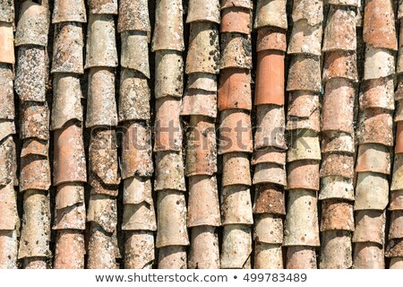 Old roof tiles seen in Sicily Stock photo © elxeneize