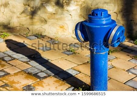 blue fire hydrant Stock photo © compuinfoto