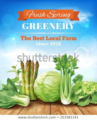 vegetales · granja · vector · cosecha · campo · idílico - foto stock © beholdereye