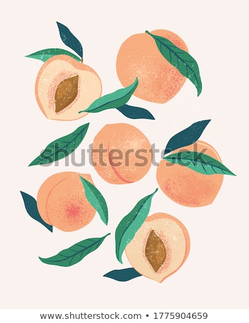 peach in vintage style stock photo © conceptcafe