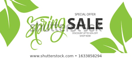 Spring Sale Handwritten Calligraphy Stock photo © Anna_leni