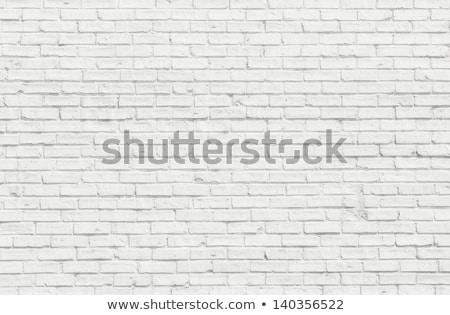 vieux · blanche · peint · mur · de · briques · bâtiment · mur - photo stock © stevanovicigor