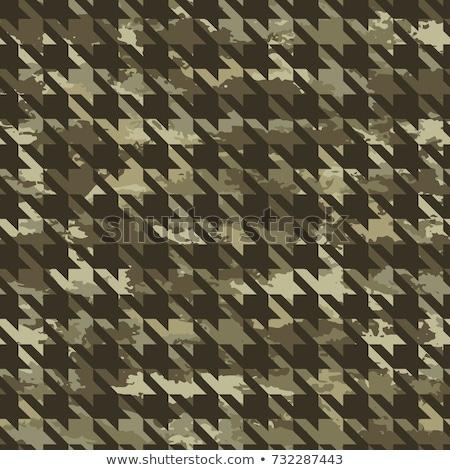 Bezszwowy tekstury kamuflaż ilustracja wektora format Zdjęcia stock © orensila