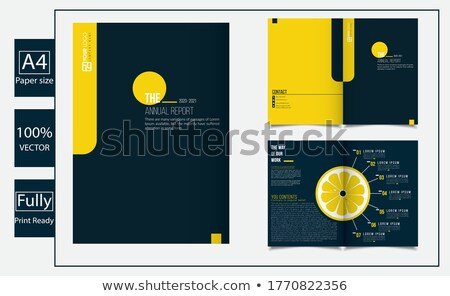 bi-fold paper mockup vector design template stock photo © SArts