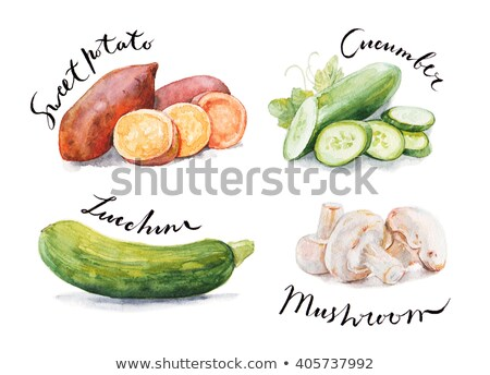 watercolor illustration of sweet potato stock photo © sonya_illustrations