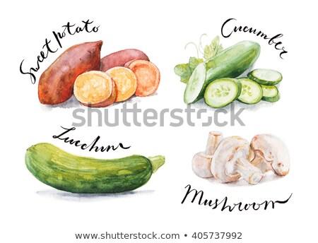 Aquarel illustratie zoete aardappel geheel verf Stockfoto © Sonya_illustrations