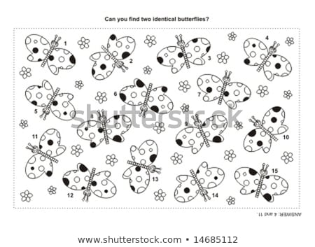 Vinden identiek zwarte spel kleurboek kinderen Stockfoto © Olena
