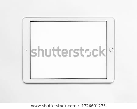Realista computador tela isolado Foto stock © psychoshadow