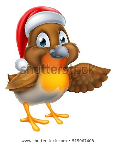 cartoon robin bird pointing wing stock photo © krisdog