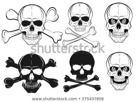 pirate hat cartoon skull and crossbones stock photo © krisdog
