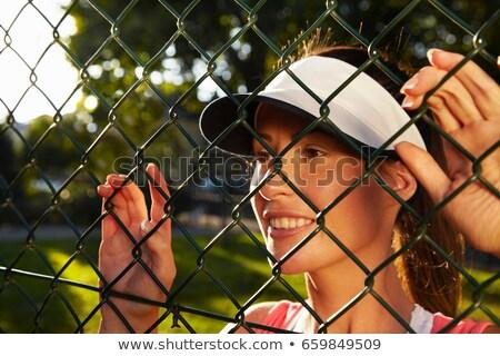 łańcucha · link · ogrodzenia · lesie · Błękitne · niebo - zdjęcia stock © is2
