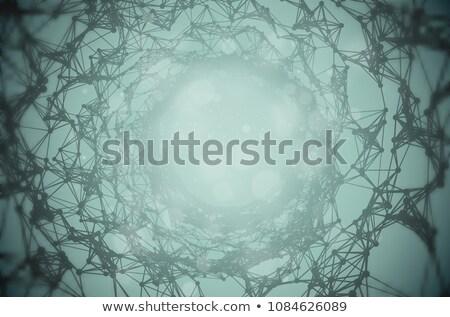 pântano · estilizado · sem · costura · árvore · floresta · natureza - foto stock © iaroslava