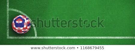 Futball Horvátország színek futballpálya terv futball Stock fotó © wavebreak_media