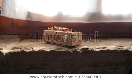 Mouse trap with real mouse catched with cheese Stock photo © lunamarina