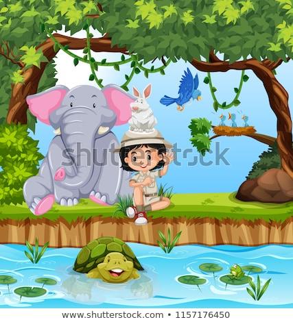 少女 スカウト 動物 フォレスト 実例 ツリー ストックフォト © bluering