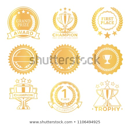 Champion · Medaillen · Set · Vektor · Metall · realistisch - stock foto © robuart