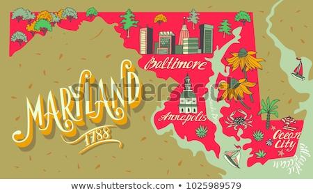 Cartoon Maryland ilustracja uśmiechnięty graficzne Ameryki Zdjęcia stock © cthoman