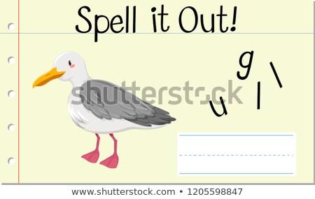 Spell English word gull Stock photo © bluering
