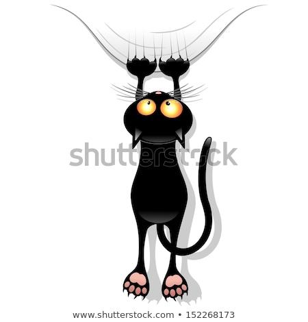 Karikatür cadı kedi öfkeli örnek Stok fotoğraf © cthoman