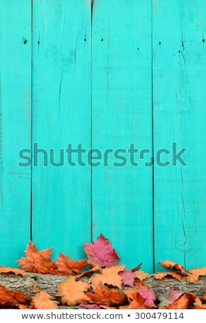 A rustic wooden background with autumn foliage - Farmers Market Stock photo © Zerbor