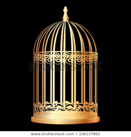 Cage for birds isolated. Trap for parrots. Vector illustration. Stock photo © MaryValery