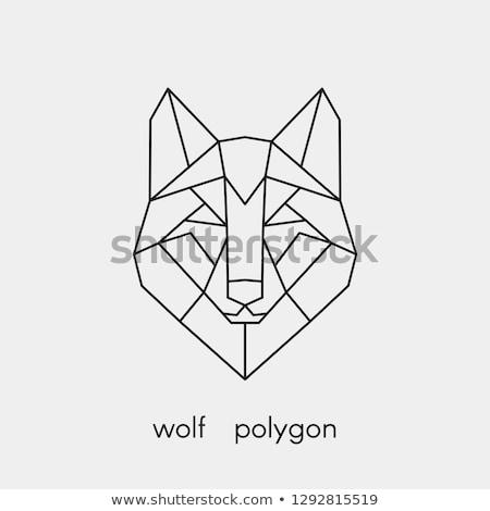 gyönyörű · farkas · szürke · stilizált · tájkép · égbolt - stock fotó © blaskorizov