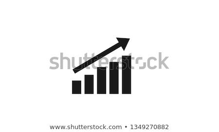 Staafdiagram financiële icon geïsoleerd witte geld Stockfoto © kyryloff