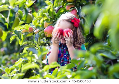 Heureux enfants jouant verger de pommiers illustration fille alimentaire Photo stock © colematt