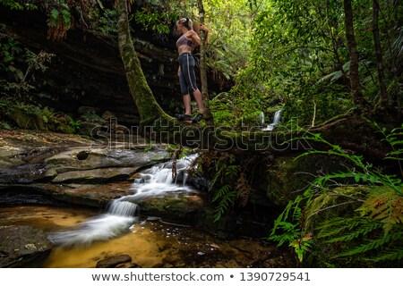 hegy · folyam · hegyek · Ausztrália · folyik · víz - stock fotó © lovleah