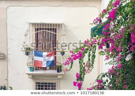 House with flag of dominican republic Stock photo © MikhailMishchenko