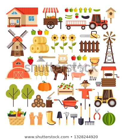 agriculteur · râteau · femme · permanent · chou · domaine - photo stock © nosik