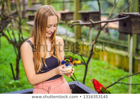 young woman feeding big tropical parrots with milk stock photo © galitskaya
