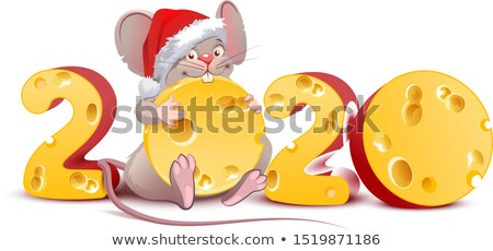 2020 year of mouse to Chinese calendar. Santa mouse holding swiss cheese Stock photo © orensila