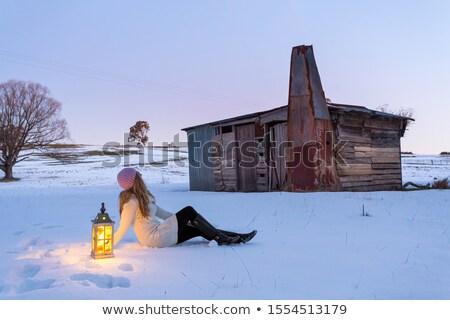 женщину фонарь сидят снега покрытый области Сток-фото © lovleah