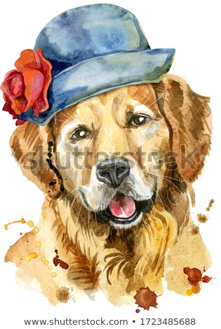 Watercolor portrait of golden retriever in a gray hat with a red flower Stock photo © Natalia_1947