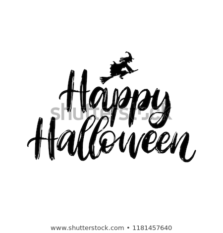 Mutlu halloween cadı vektör görüntü süpürge Stok fotoğraf © damonshuck