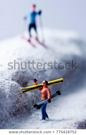 Esquiar brinquedo cão fundo vermelho Foto stock © FOKA
