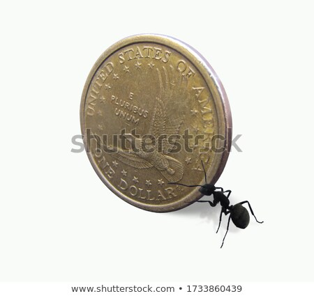 Ant and coin Stock photo © oxygen64