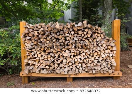 Bois de chauffage énorme coupé séché bois Photo stock © searagen