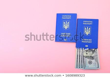 dólares · extranjero · negocios · azul · color · blanco - foto stock © vlad_star