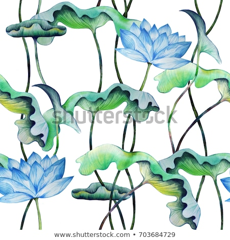 blue water lily stock photo © eldadcarin